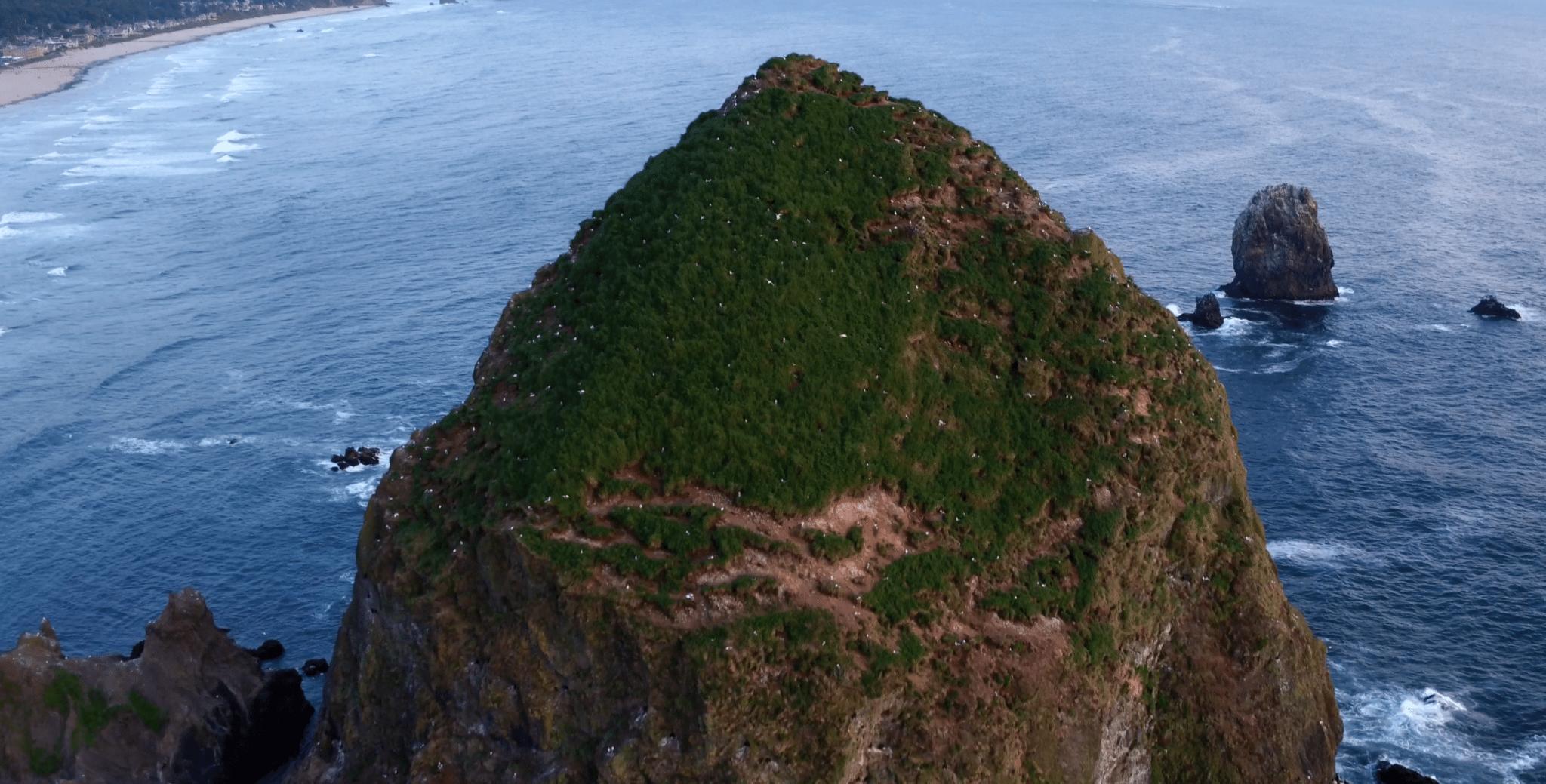 haystack-rock-cannon-beach-oregon-drone